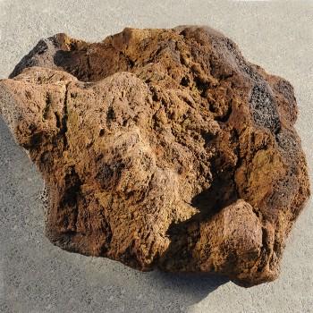 Tanaga Lava 10/50 cm