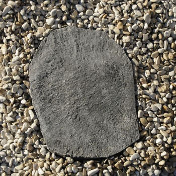 "Stepping Stone basalt ""Nature"""